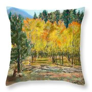 Rocky Mountain Siesta Throw Pillow
