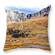 Rocky Mountain Tundra And Lake Throw Pillow