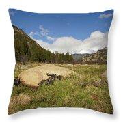 Rocky Mountain Valley Throw Pillow