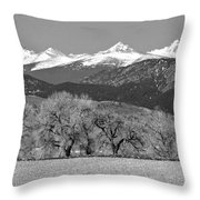 Rocky Mountain View Bw Throw Pillow