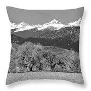 Rocky Mountain View Bw Throw Pillow