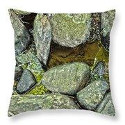 Rocky Nature Throw Pillow