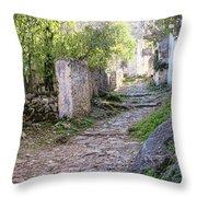 Rocky Pathway Throw Pillow