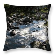 Rocky Rapids Throw Pillow