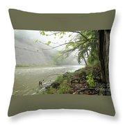Rocky River #1 Throw Pillow