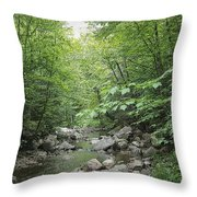 Rocky River In Green Throw Pillow