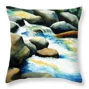 Rocky River Run Throw Pillow