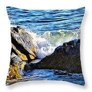 Rocky Shore 1 Throw Pillow