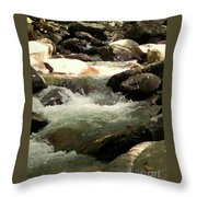 Rocky Stream 4 Throw Pillow