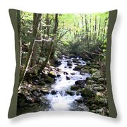 Rocky Stream 6 Throw Pillow