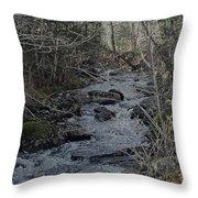 Rocky Stream Throw Pillow