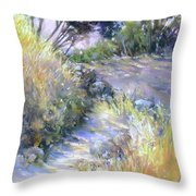 Rocky Trail Throw Pillow