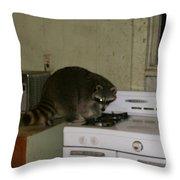Rockyracoon Throw Pillow