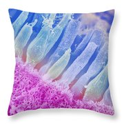 Rods And Cones In The Eye Throw Pillow