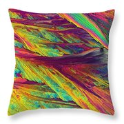 Roll Baby Roll Throw Pillow