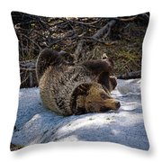Roll In The Snow Throw Pillow