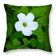 Roll Me Over In The Clover Throw Pillow