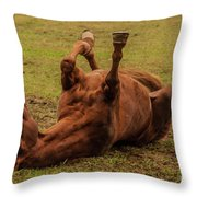 Roll Over Throw Pillow