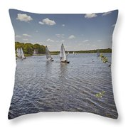Rollesby Broad Throw Pillow
