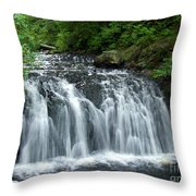 Rolley Lake Falls Dry Brushed Throw Pillow
