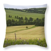 Rolling Farmland Stretches Throw Pillow