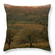 Rolling Foothills Of The Sierra Nevada Throw Pillow