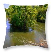 Rolling On The River Throw Pillow