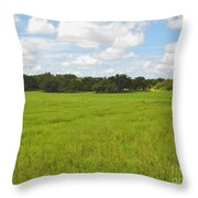 Rolling Pasture Throw Pillow