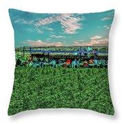 Romaine Lettuce Harvest Throw Pillow