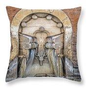 Roman Books Throw Pillow