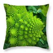 Roman Cauliflower Throw Pillow