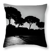 Roman Morning Throw Pillow