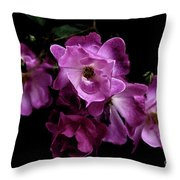 Romance - Wc Throw Pillow