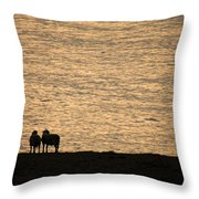 Romancing The Sheep Throw Pillow