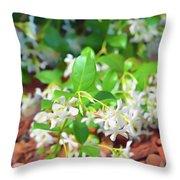 Romantic Skies Jasmine In Bloom Throw Pillow