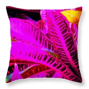 Romney Pink Throw Pillow
