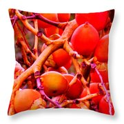 Romney Red Throw Pillow