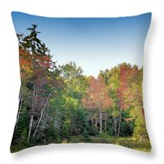 Rondaxe Color Throw Pillow