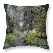 Roosevelt Grove Throw Pillow