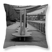 Roosevelt Island  Bench I I Throw Pillow