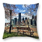 Roosevelt Island Throw Pillow