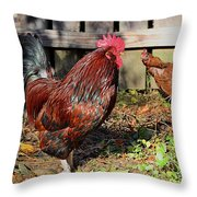 Rooster And Friend Throw Pillow