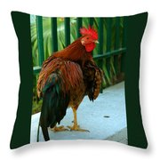 Rooster By The Fence Throw Pillow