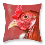 Rooster Close-up On A Reddish Background Throw Pillow