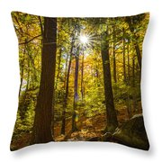 Rooster Comb Trail Throw Pillow