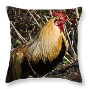 Rooster Protecting Hen Throw Pillow