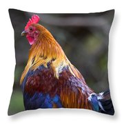 Rooster Rooster Throw Pillow