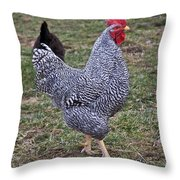 Rooster Strutting Throw Pillow