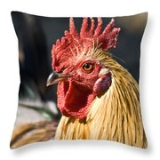 Rooster Up Close And Personal Throw Pillow