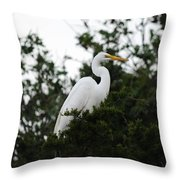 Roosting Egret Throw Pillow